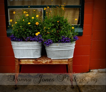 Strolling the one block downtown area you will enjoy the multiple pots of flowers, the aged brick buildings and the other antique touches throughout the town...